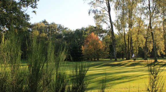 The Royal Golf Club du Hainaut's picturesque golf course in gorgeous Brussels Waterloo & Mons.