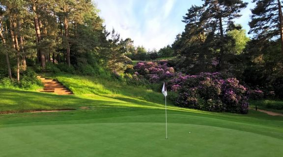 Woburn Golf Club consists of among the preferred golf course around Buckinghamshire